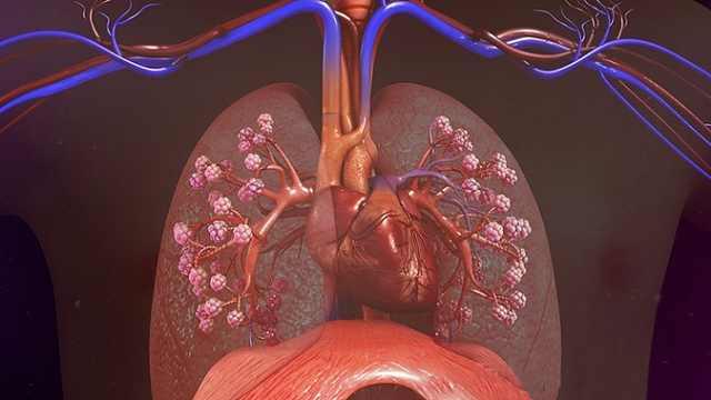第1节:呼吸困难的概述