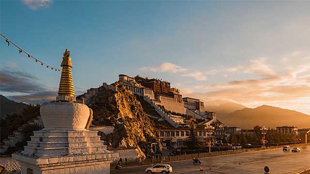 """红景天:藏民脱贫致富的""""高原红"""""""