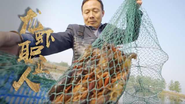 盱眙龙虾育苗人:以前多到拿去喂猪,现在要拿豆浆养殖