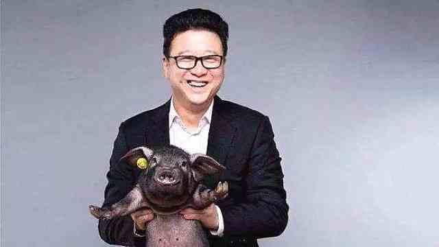 又一老板入圈,网易CEO丁磊将开直播带货