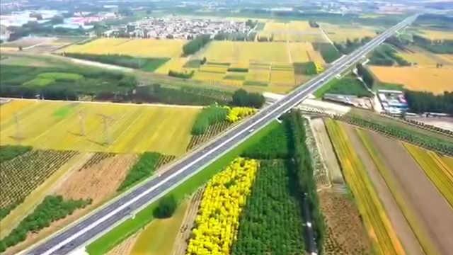 航拍北京最大产麦区,一望无垠、黄绿相间犹如彩色地毯
