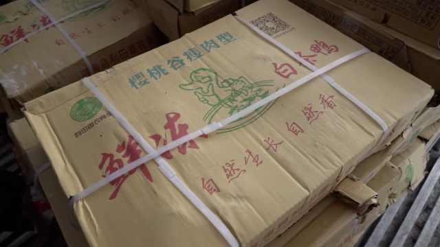 新疆烤鸭来了!500吨白条鸭乘火车奔赴北京
