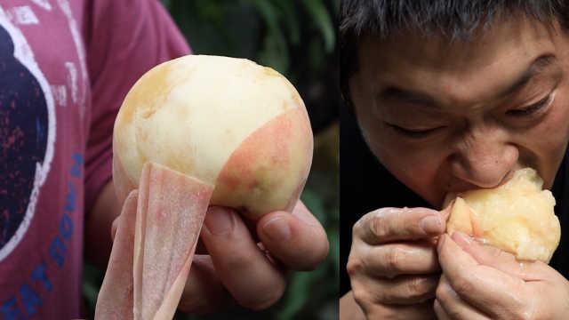 吃货纷争| 硬桃派PK软桃派:爱吃脆桃的人都很豪爽?