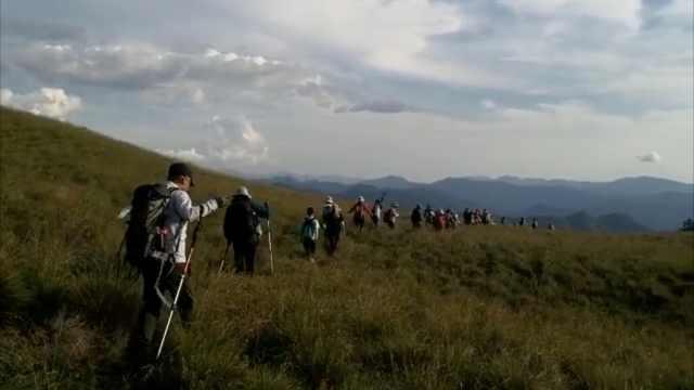 53名驴友迷路被困山顶,最小的9岁,警民连夜搜