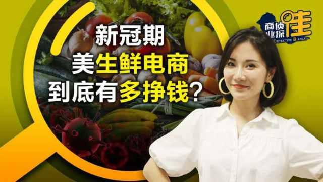 从团购到卖菜,中国电商如何在美市场争蛋糕?