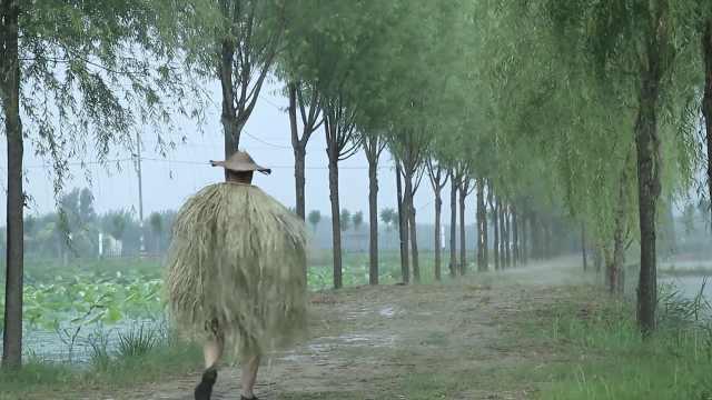 42岁副镇长辞去公务员做乡村旅游,当网红带百户村民创业