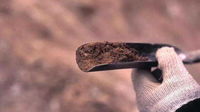 盗墓必备神器洛阳铲,为何在盗墓工具里是神一般的存在?
