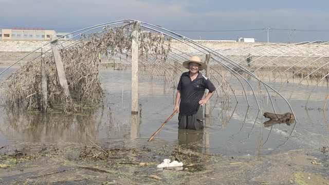 重返家园|王家坝村民开启生产自救,大爷拔6亩烂花生准备复耕