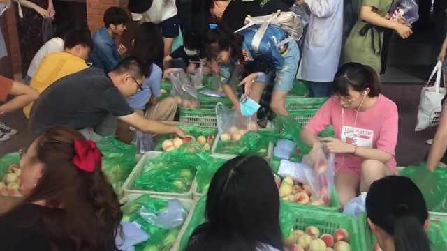 嗷嗷待哺!天津大学给12000多名学生每人发了6个水蜜桃