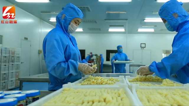 赤峰市红山绿色食品产业园为工业高质量发展添新动能