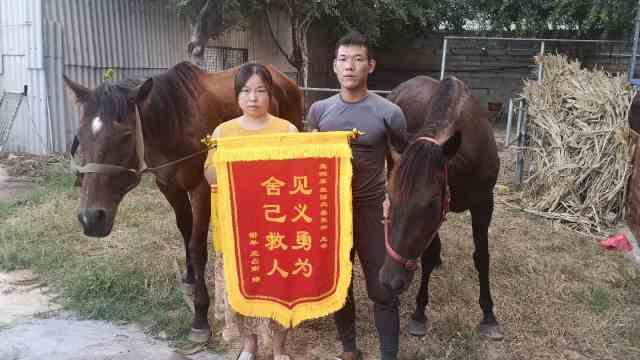 冲进海里救男孩的两匹马病危,获救者妈妈哭着道歉