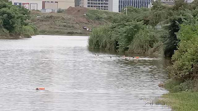 嘉陵江水位大涨,游泳爱好者转战水库,管理员喊破嗓劝不上来