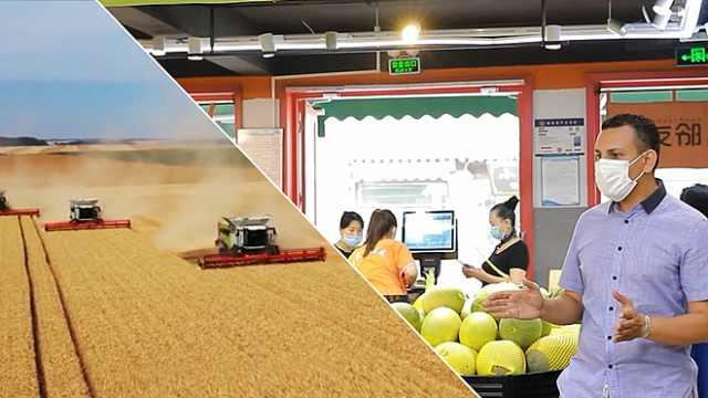 直面疫情,中国全力维护粮食安全