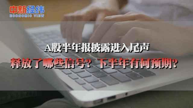 桂浩明:A股公司复苏特征明显,全年业绩正增长概率较大