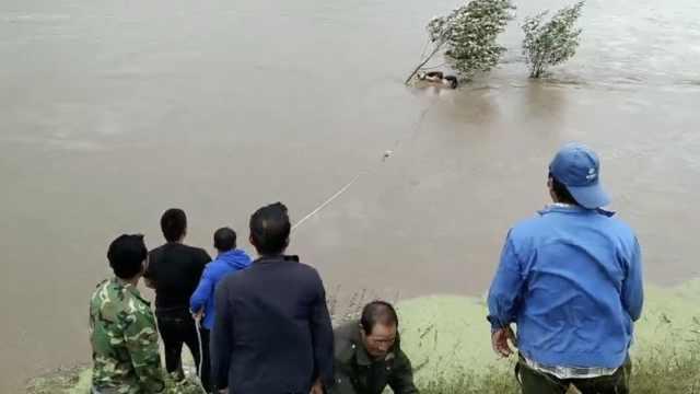 放牛男子被困洪水抱树坚持2小时,抗洪镇长跳水拼死救人