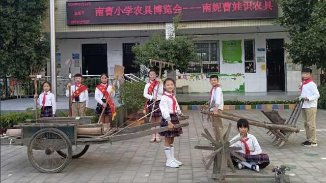 郑州一小学将300多件农具搬进校园:让学生了解农耕文化