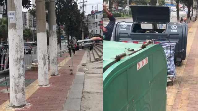 贵阳一盲道被电线杆垃圾箱霸占,还有护栏挡住整条人行道