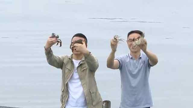 看,第一篓阳澄湖大闸蟹出水啦!