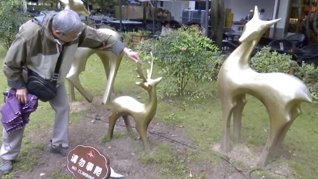 """西湖边金鹿鹿角被折毁,""""熊孩子""""排队攀爬当马骑"""