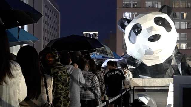 顶流担当!成都千人冒雨排队打卡,只为和大熊猫同框
