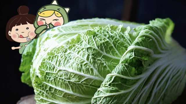 为什么东北人冬天爱囤大白菜?