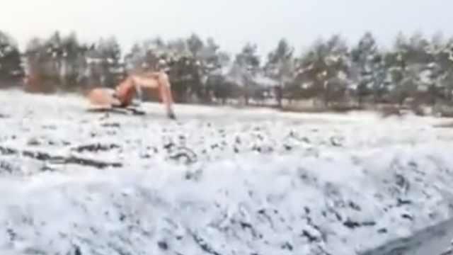 黑龙江降大雪130万亩水稻受灾,村民求助:缺收割车,不收白忙了