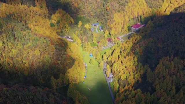秦岭南麓3万亩林海尽披黄金甲!航拍四川曾家山绝美秋景