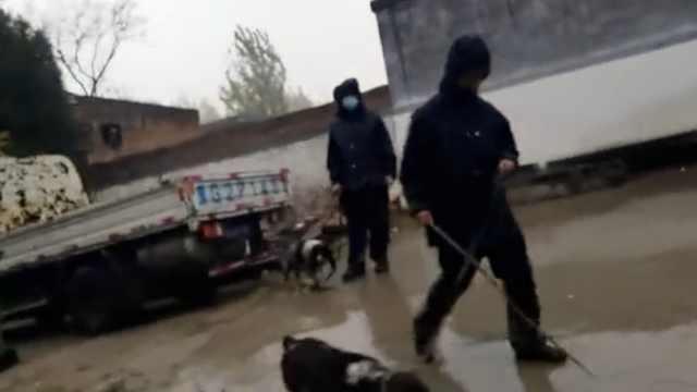 警方出动警犬在原阳命案邻村搜寻,8岁失踪女孩仍未找到