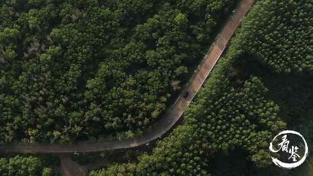 路景合一,海南的这条生态旅游风景道圈粉无数