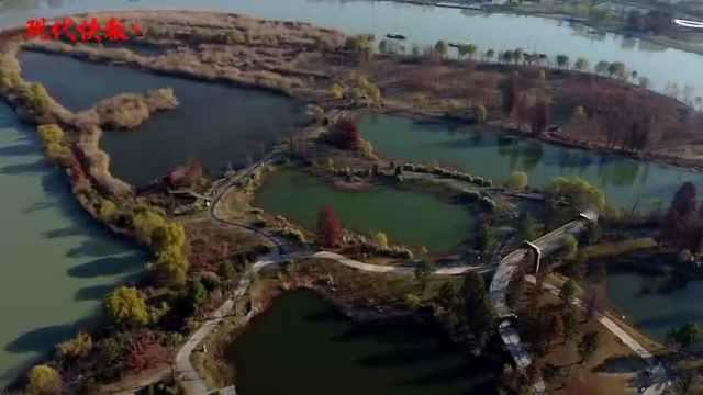 """千里运河最美的曲线:扬州三湾将来更有""""文化味"""""""