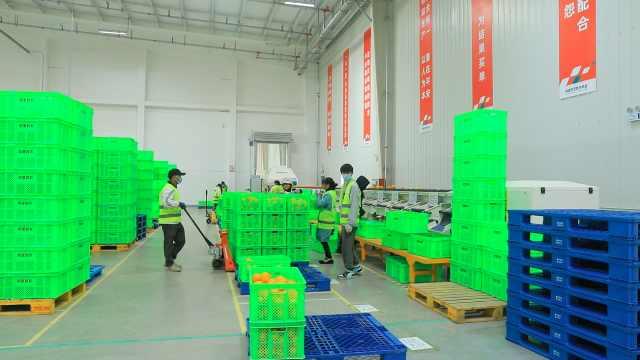 探访阿里产地仓:超高速水果分选,还可测试糖度