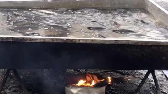 东北零下30℃早市现水煮活鱼,商贩:5分钟就结冰,防止鱼被冻死