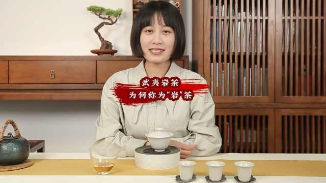 """武夷岩茶为何称为""""岩茶"""""""