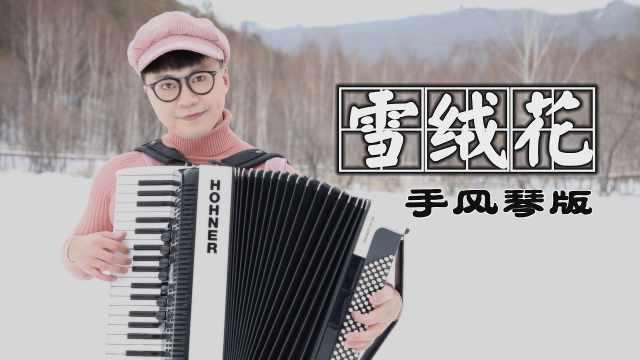手风琴演绎《音乐之声》插曲——《雪绒花》