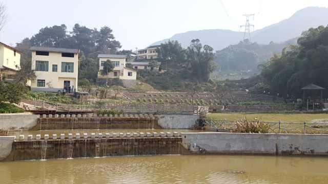 建隧道挖出大股山泉水,重庆一缺水贫困村逆袭成美丽乡村景点