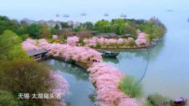 """太美!""""水韵江苏•有你会更美""""旅游宣传片登陆央视"""
