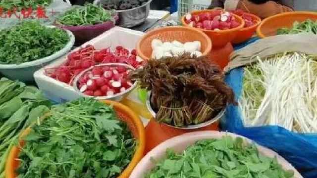 上海香椿头90元/斤?南京本地香椿头上市,价格降到40元/斤