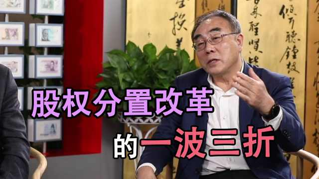 刘纪鹏:股权分置改革的一波三折