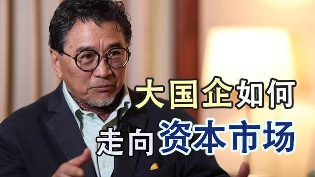 蔡洪平:大国企如何突破重重障碍走向资本市场