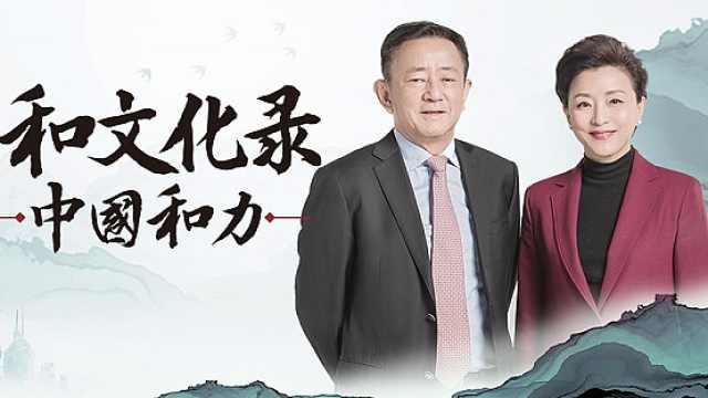 解读《中国和力》| 樊纲:永远要非常谨慎地看待投资(下)