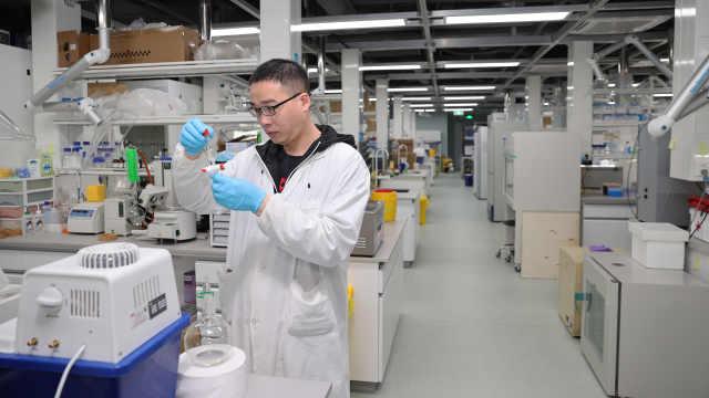 探访深圳湾实验室!为全球健康事业贡献深圳力量