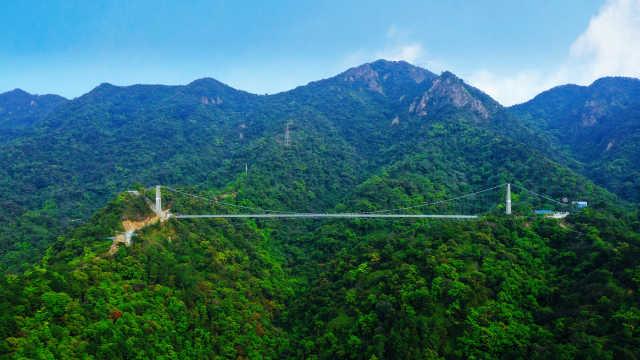 广州周边原始森林探险,游玻璃桥➕树冠长廊