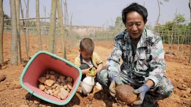 云南一村民捡石头年挣百万,还有人在自家墙根发现彩玉致富