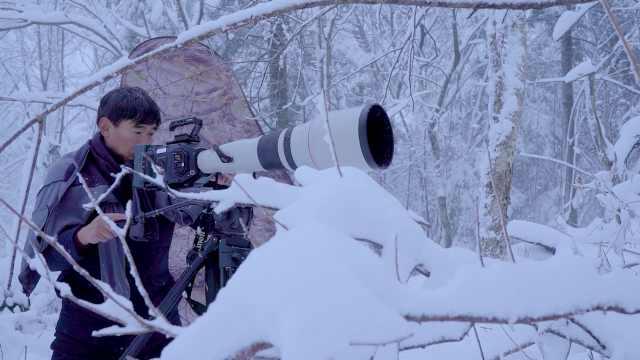 去零下28度的长白山拍野生动物,是怎样一种体验?