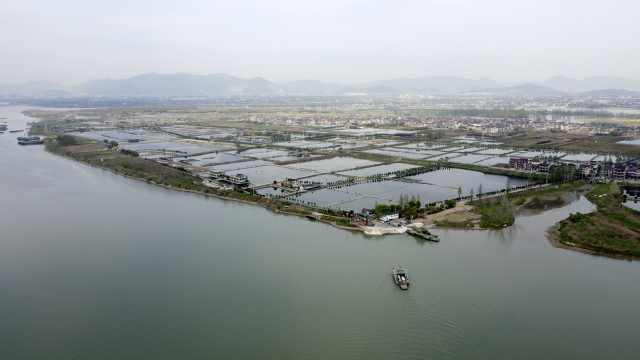 杭州有个钓鱼天堂,无桥孤岛上有5千亩鱼塘,岛民坐轮渡打工