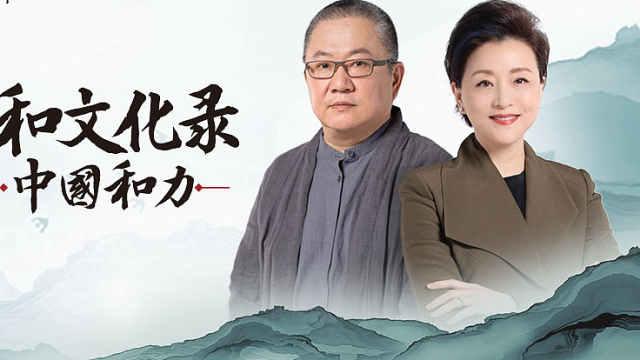 解读《中国和力》王澍:和而不同的一个核心是多样性(上)