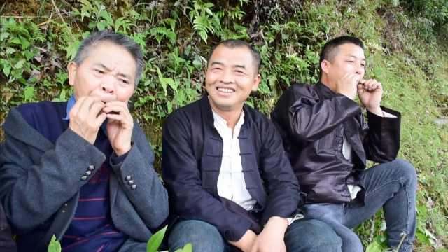 贵州山村用树叶吹曲传情,单身男女靠它找对象