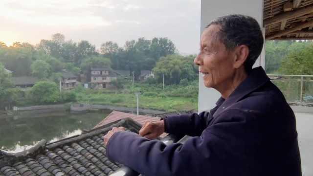 上万白鹭当保姆陪留守老人,大爷自家楼顶建观鸟台免费开放