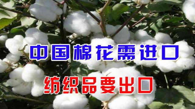 中国棉花需进口,纺织品要出口