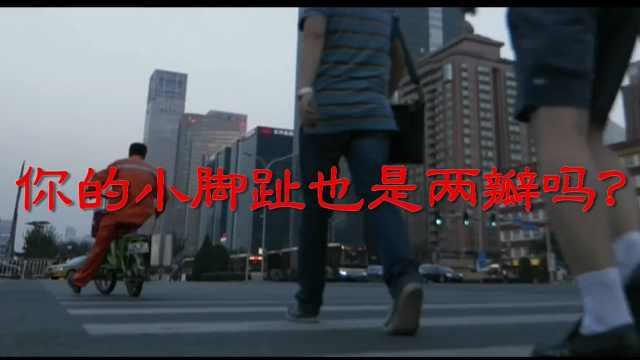 小脚趾是两瓣就是纯种汉人,还都来自山西,是真的吗?